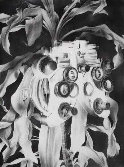 Gonzalo Fuenmayor, 'Turbulent paradise', 2020