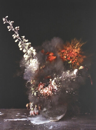 Ori Gersht, 'Untitled 28 from Time After Time: Exploding Flower & Other Matters', 2007