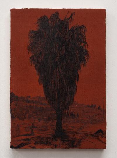 Saad Qureshi, 'Sadar Jaan', 2020