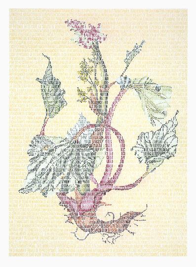 Juanli Carrión, 'Autoctonía. Lili Polygonaceae', 2015