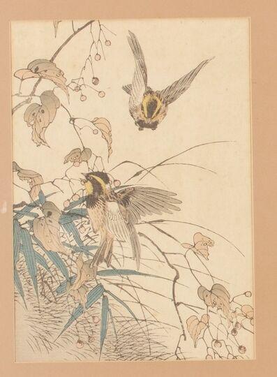 Imao Keinen, 'Soja, alcaudón y apalopteron (Daizu hakurō meguro 大豆-伯労-メグロ)', 1892