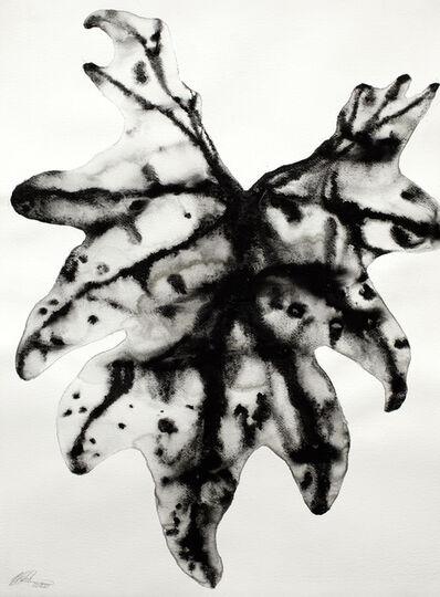 Barbara Edelstein, 'Reflections • Nature Series #7', 2020