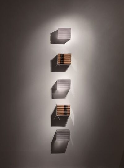 Joseph Havel, 'Judd Bookshelf', 2013
