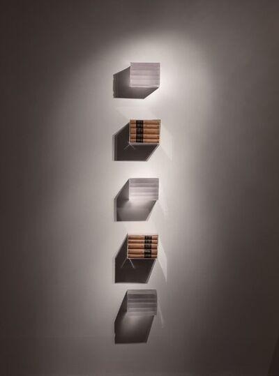 Joseph Havel, 'Judd Bookshelf', 2013