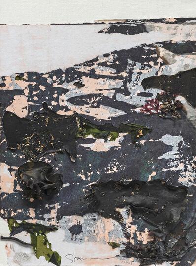 Gottfried Salzmann, 'Les algues', 2018