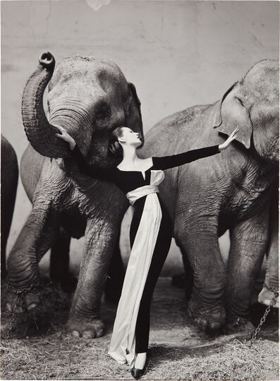 Richard Avedon, 'Dovima with Elephants, Evening dress by Dior, Cirque d'Hiver, Paris, August', 1955