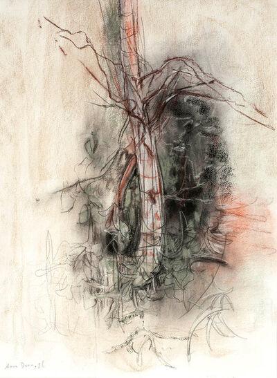 Anne Dunn, 'Study, Lake Nigadoo VI', 1996