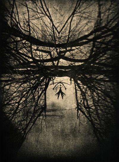 Andrej Lamut, 'Gallows', 2018