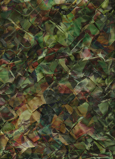 Nir Evron, 'Composite (Jungle)', undated