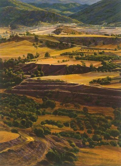 Peter Krausz, '(No) Man's Land  #4', 2008