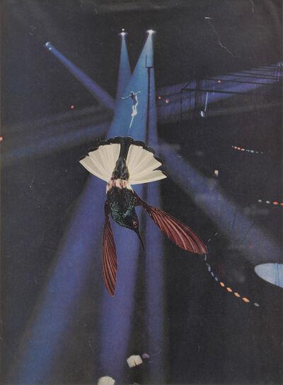 Jean Conner, 'HUMMINGBIRD', 1984