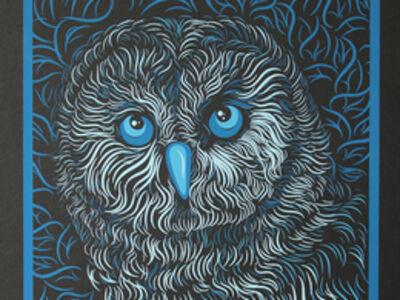 Diane Wilson, 'Barn Owl', 2019