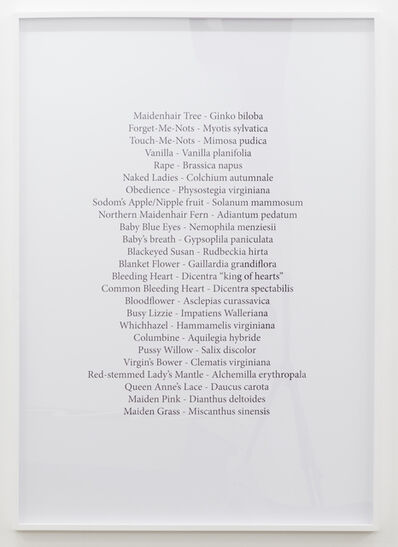 Viktoria Wendel Skousen, 'Index of a Private Collection', 2015