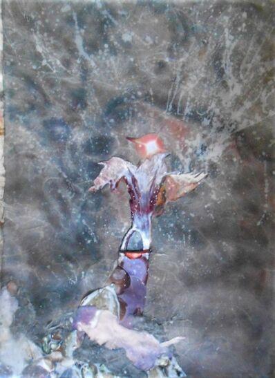 Gertrude Abramson, 'Flying Creatures', 2020