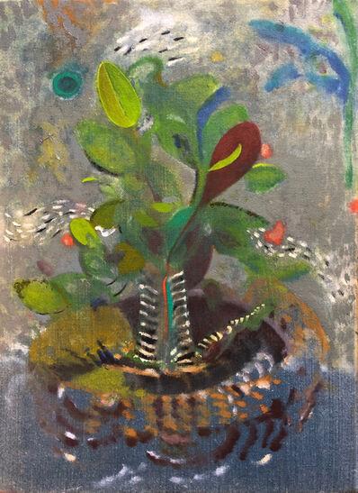 Ben Risk, 'Rejuvenated Plant', 2018