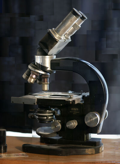 Yuval Yairi, 'Microscope', 2004