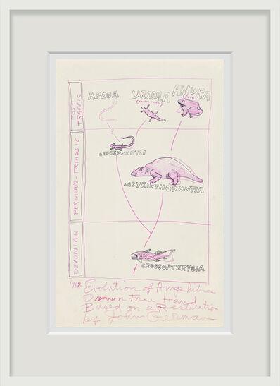 Robert Smithson, 'Evolution of Amphibians', 1962