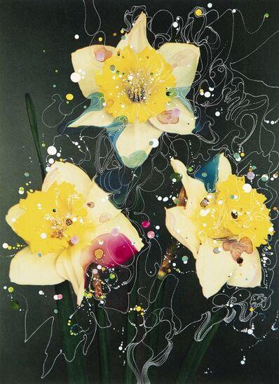 Sebastiaan Bremer, 'Bicolor Trumpet Daffodil Queen of Bicolors II', 2019