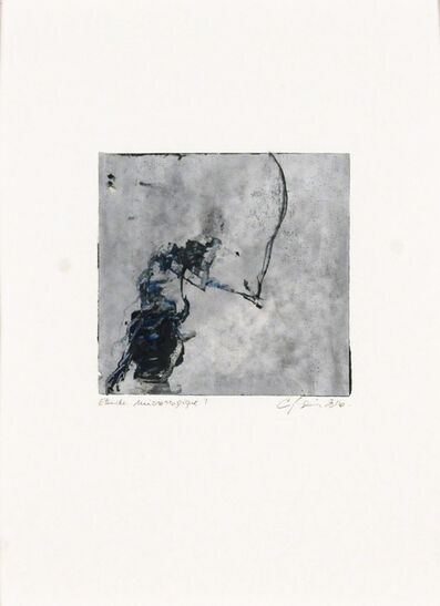 Carol Bernier, 'Étude microscopique 9', 2016