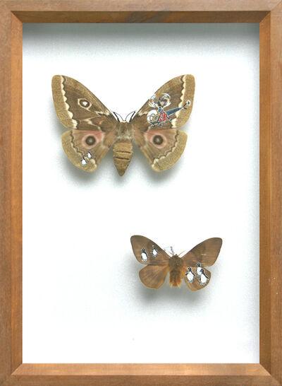 Akihiro Higuchi, 'Collection 0608', 2008