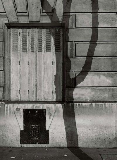 Michael Wolf (b. 1954), '#2, Paris Tree Shadows', 2014