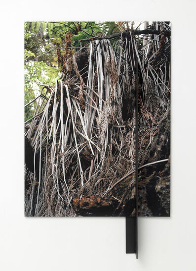 Letha Wilson, 'Kona Fronds Steel Hang', 2015