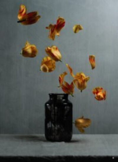 Titus Brein, 'Silence of Gravity III '