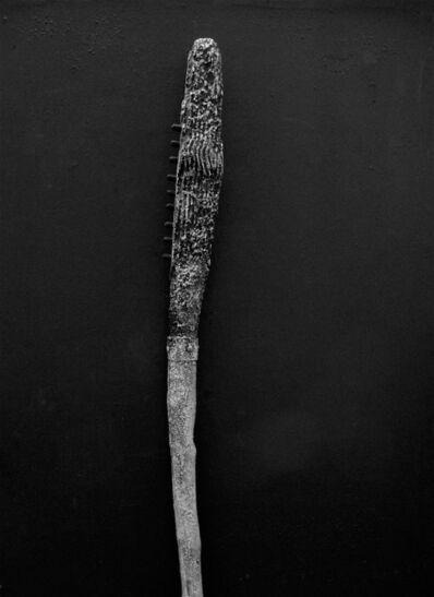 Charles Ramsburg, 'Pathing Stick #15'