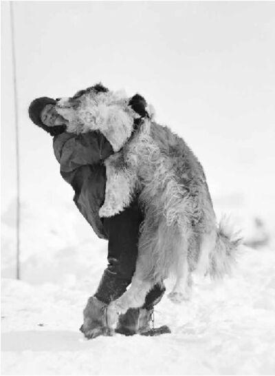 Frank Hurley, 'Hussey lifting Samson', 1912-1914