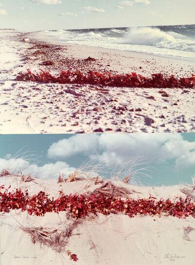 Peter Arthur Hutchinson, 'Beach Sumac Line', 1974