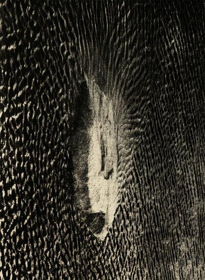 Andrej Lamut, 'Fish', 2018