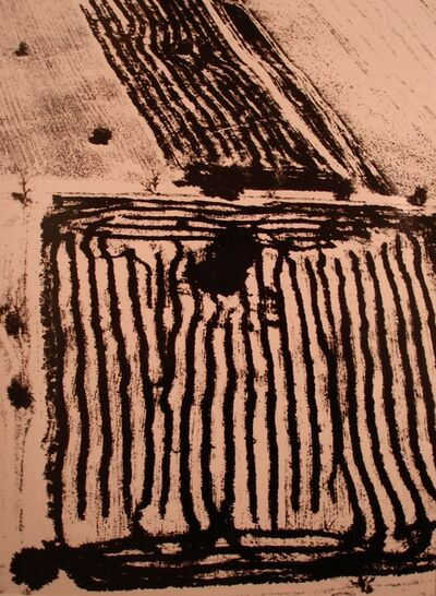 Mario Giacomelli, 'Presa di coscienza sulla natura', 1954-2000