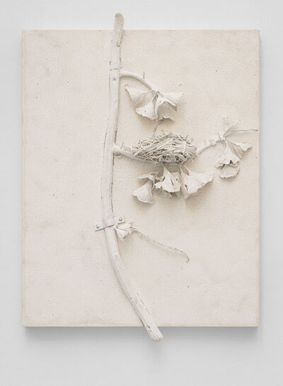 Michael Assiff, 'Ginkgo, Nest', 2017