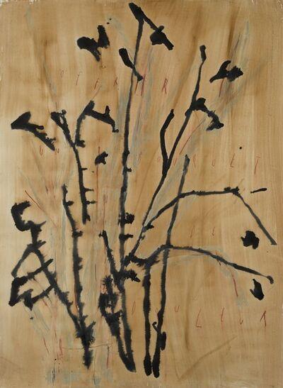 ARPAÏS du bois, 'Offrir un bouquet de douleur', 2017