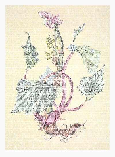 Juanli Carrión, 'Lili Polygonaceae', 2015