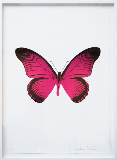 Damien Hirst, 'The Souls IV - Fuchsia Pink - Raven Black', 2010