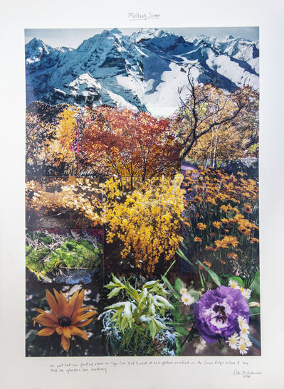 Peter Arthur Hutchinson, 'Melting Snow ', 2006