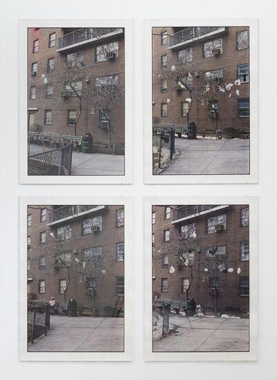 Zoe Leonard, 'Untitled', 2000