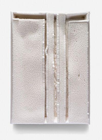 Cary Esser, 'Parfleche(w3)', 2017