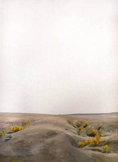 Teo Nguyen, 'Untitled 45', 2019