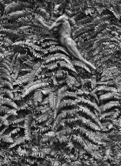 Sebastião Salgado, 'Yali man. West Papua. Indonesia.', 2010