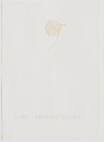 Elisabetta Gut, 'Luna Raggomitolata', 1977