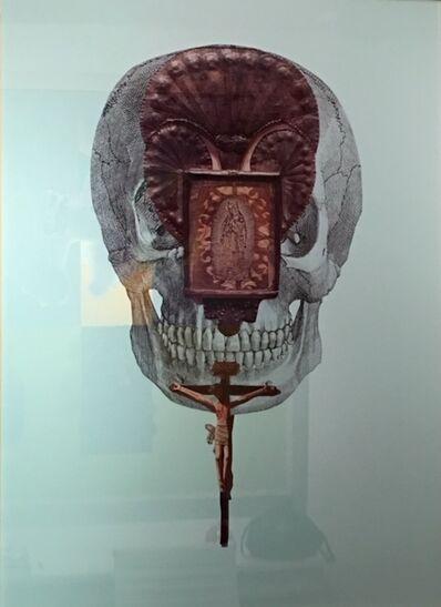 Ann Harithas, 'Dead Head', 2011