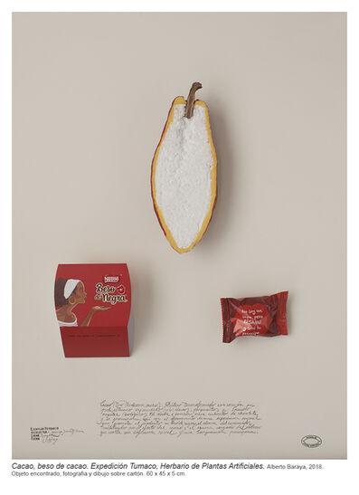 Alberto Baraya, 'Cacao, Beso de cacao, Expedición Tumaco (Herbario de Plantes Artificiales)', 2018