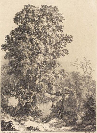 Eugène Bléry, 'Beech Grove', 1840