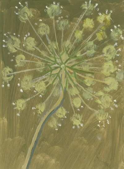 Lois Dodd, 'Queen Anne's Lace', 2018