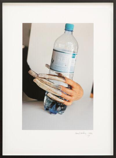 Lois Weinberger, 'Das Meer,', 1994