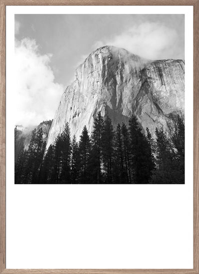 Gregers Heering, 'Pines Rising (to El Capitan)', 2016