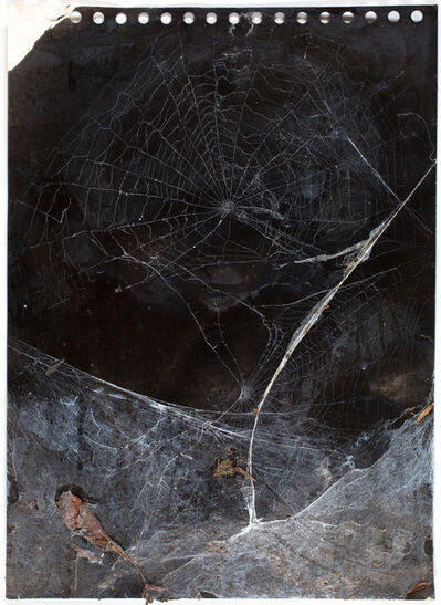 Christian Eisenberger, 'Untitled', 2016