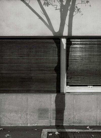 Michael Wolf (b. 1954), '#6, Paris Tree Shadows', 2014